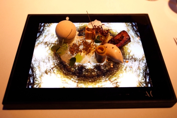 "This dish is called Splendur ""Bongert"" and is made in collaboration with light artist Peter Diem. This one is all bout foie gras in different textures – frozen, fried, terrine served with apple."