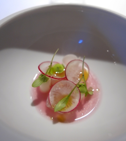 First amouse bouche: iced red cabbage, mustard mousse, white fish and radish.